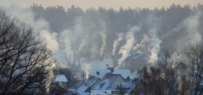 Smog jest groźniejszy, niż myślisz. Jak z nim walczyć?