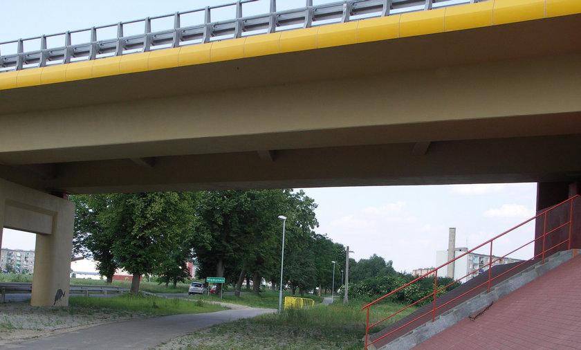 Dzieci skoczyły z mostu w Międzyrzeczu