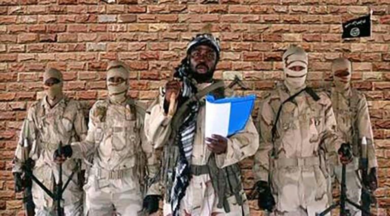 Abubakar Shekau leads the Boko Haram terrorist sect (Punch)