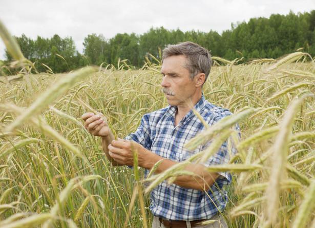 Rolnicy będą musieli ujawniać dochody ze sprzedaży produktów.
