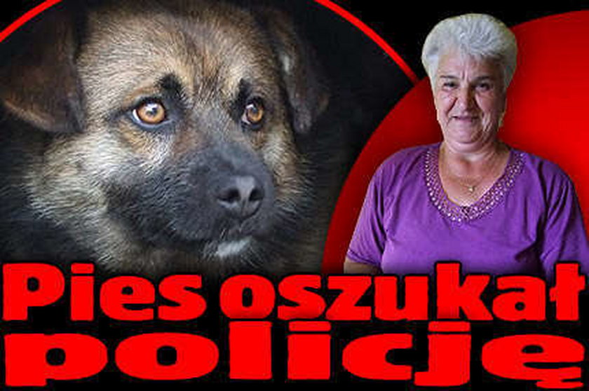 Pies oszukał policję