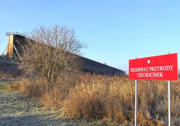 Rezerwat przyrody, Ciechocinek