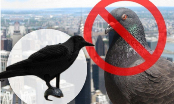 Plastična vrana