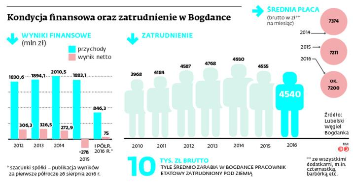 Kondycja finansowa oraz zatrudnienie w Bogdance