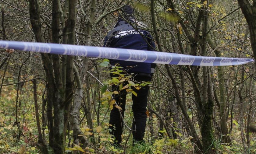 Odnaleziono zwłoki kobiety w Lesie Kabackim. Zdjęcie ilustracyjne