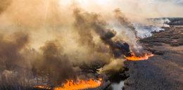 Pożar wokół Czarnobyla. Państwowa Agencja Atomistyki ostrzega