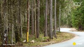 Jak poruszać się po polskich drogach?