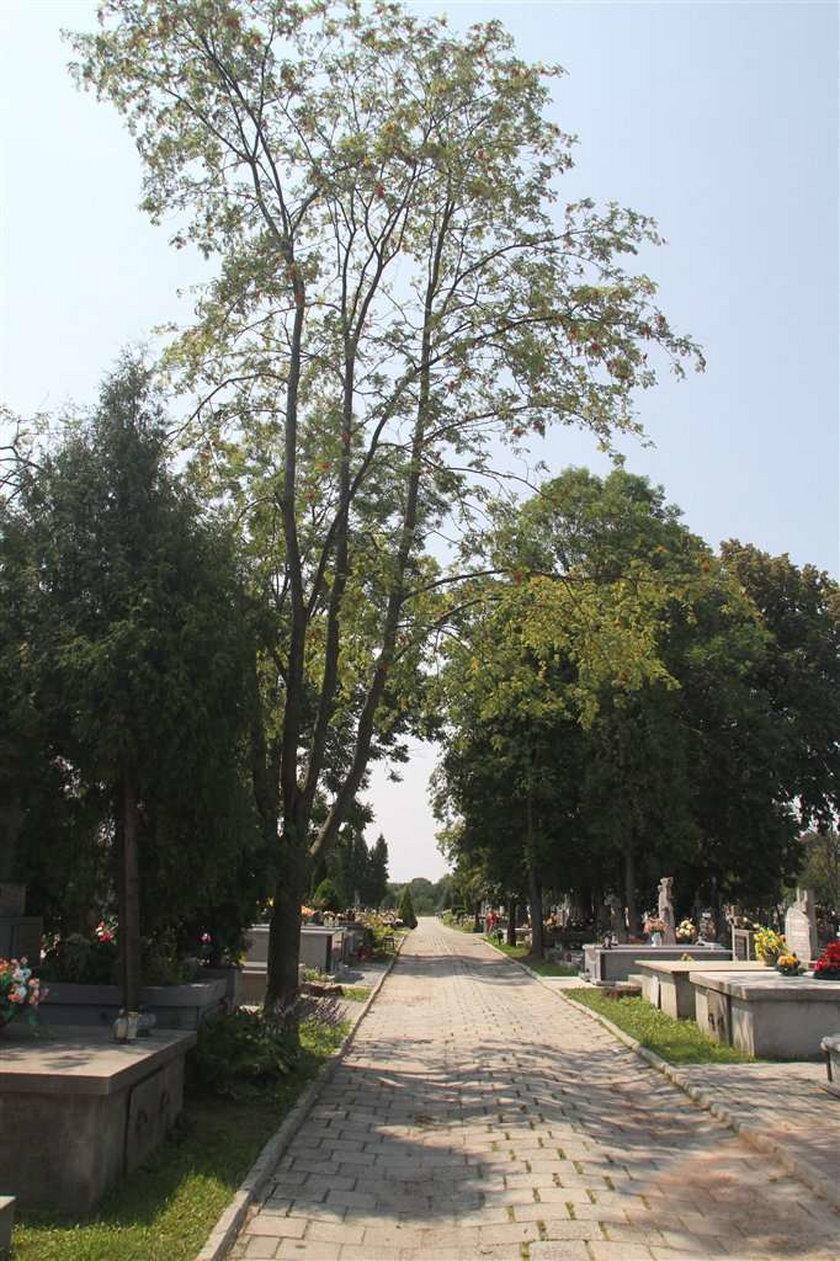Piorun strzelił w nas na cmentarzu!