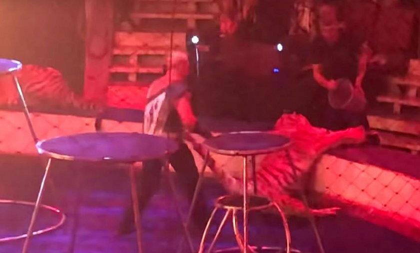 Przerażające nagranie z cyrku. Zwierzę wyglądało, jakby umierało