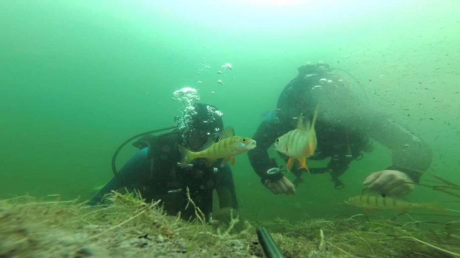 Nurkowie będą sprzątali dno jeziora Drawsko