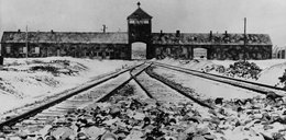 Skandal! Amerykanin zrobił to w Auschwitz-Birkenau