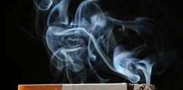 Zamach na palaczy! Slimy i mentole zakazane!