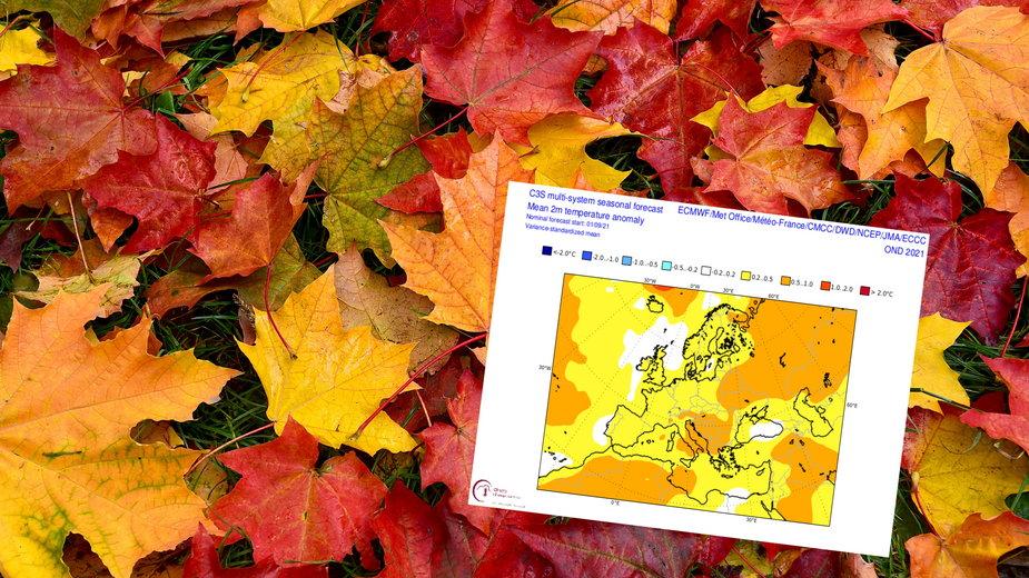 Jaka pogoda czeka nas w czasie jesieni 2021?