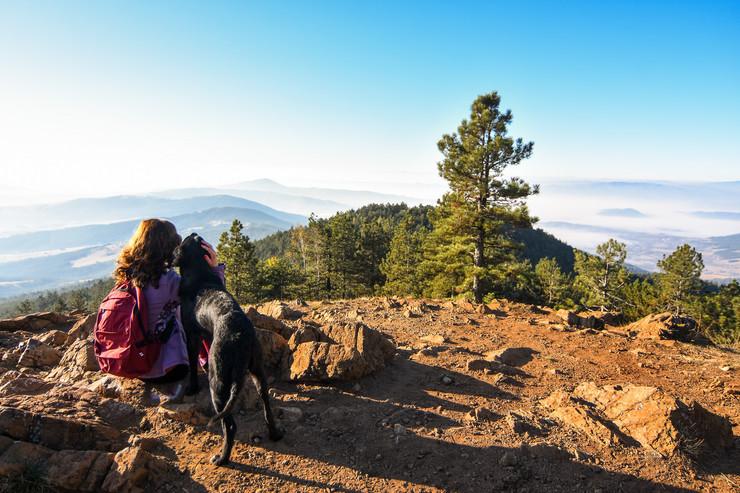 Divčibare, planina, turizam