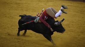Portugalia: przepisy o walkach z bykami naginane, aby przyciągnąć turystów