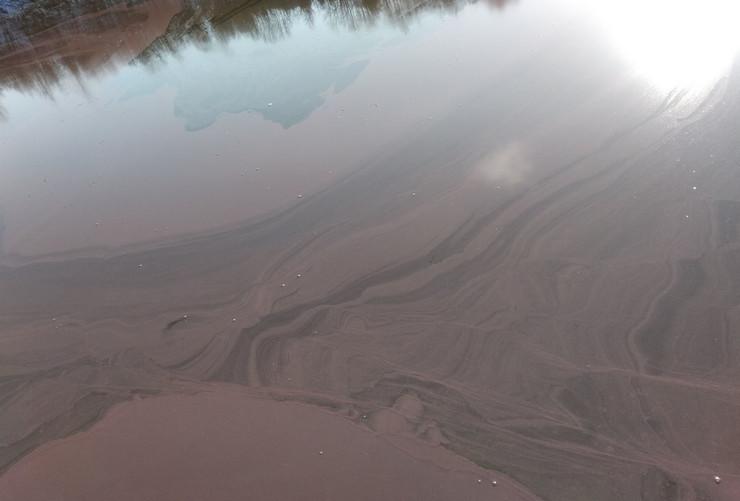 Alge na jezeru Vrutci