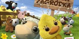 Zwierzaki przebiją świeżaki? Polska sieć rozdaje maskotki