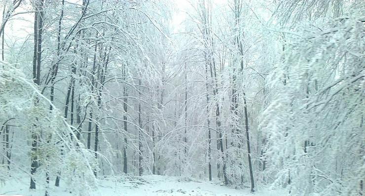 459563_ivanjica-sneg-ivanjica01-foto-beba-bojovic