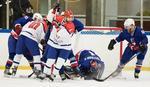 BITKA ZA MEDALJU Hokejaši Srbije preko Islanda do bronze