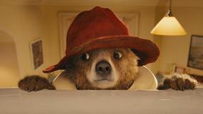 """Ruszyły zdjęcia do filmu """"Paddington 2"""""""