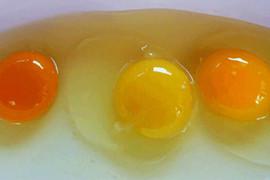 Možete li da procenite koje jaje je od BOLESNE KOKOŠKE, a koje je ZDRAVO?