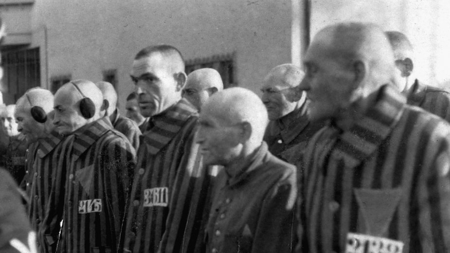 Więźniowie obozu koncentracyjnego Sachsenhausen (bez W). Wśród nich byli więźniowie z różowym trójkątem prześladowani z powodu homoseksualności