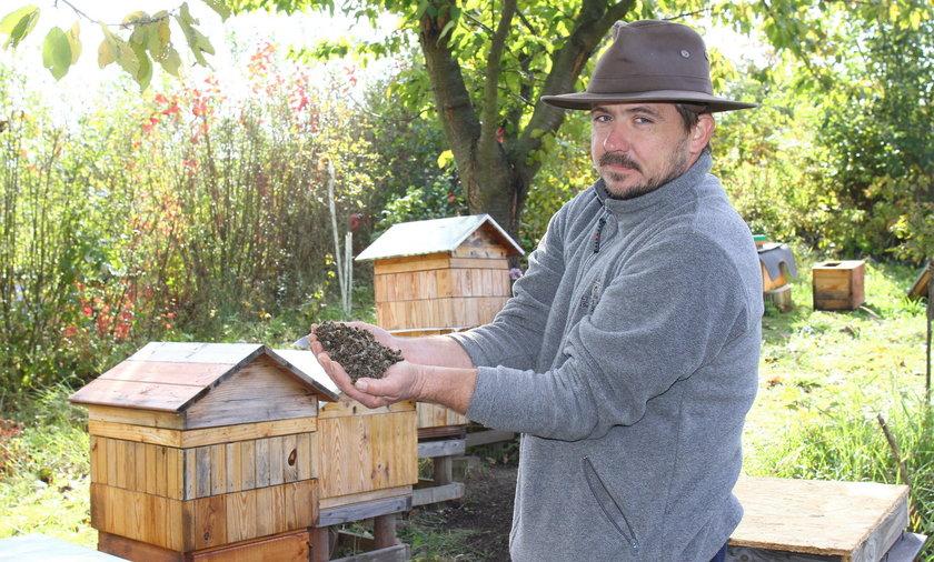 Rafał Szela stracił prawie wszystkie swoje pszczoły