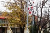 Novogodišnja rasveta u Borči