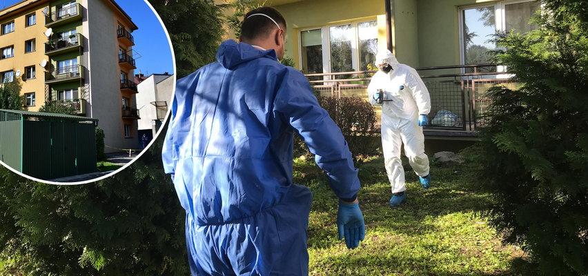 Zabójstwo 7-letniego Maksyma w Tarnowie. Znamy szokujące szczegóły zbrodni!