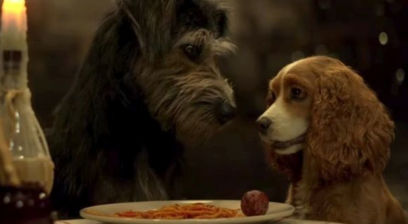 Filming That 'Lady & The Tramp' Spaghetti Scene with Real Dogs Was Ruff