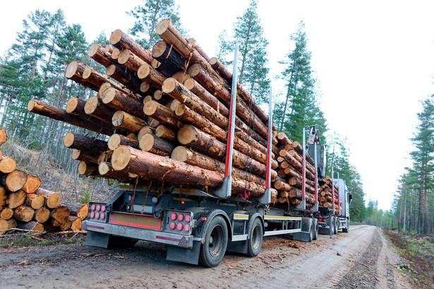 Ładunek drewna