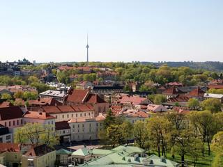 Prezydent Litwy: Należy wzmacniać partnerstwo z Polską