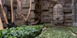W Orientarium w Łodzi robi się zielono. Rośliny z Azji już są. A kiedy przyjadą zwierzęta?...