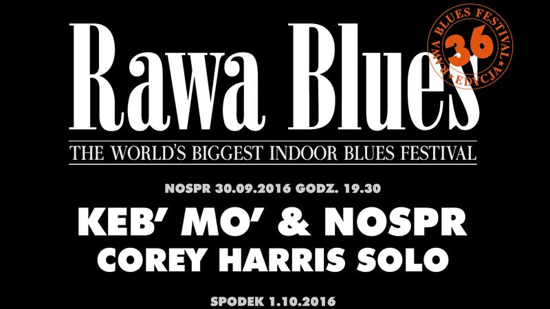 Rawa Blues Festival 2016 - plakat