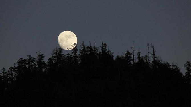 Mesec u Ribama Devicama ne donosi ništa dobro