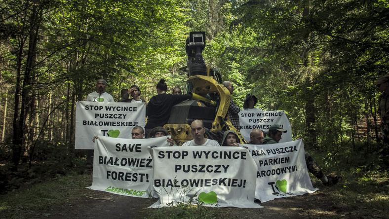 Protest obrońców Puszczy Białowieskiej