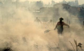 Pożar w Portugalii dotarł do kurortów. Spłonęło 10 tys. ha lasów i nieużytków