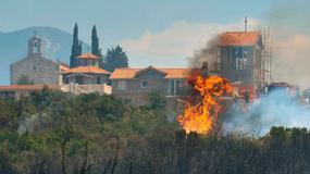 Polak zatrzymany w Czarnogórze w związku z pożarem lasu