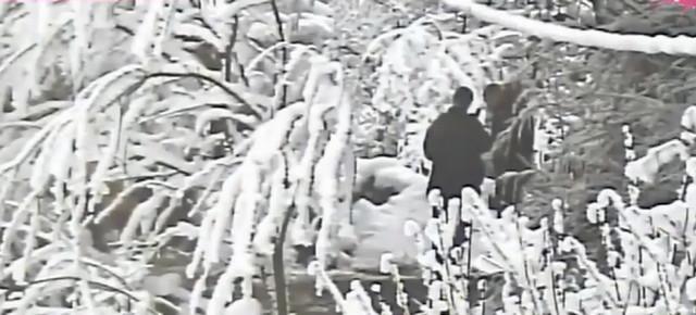 Velja Nevolja sa snajperom u šumi