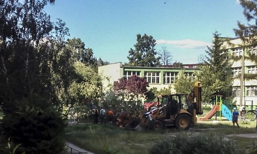 Drzewo spadło na plac zabaw