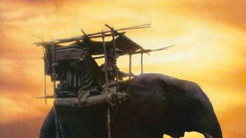 W pustyni i w puszczy (2001)