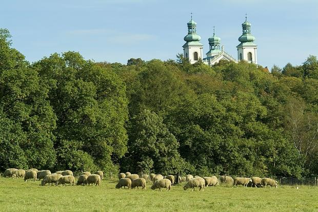 Klasztor Kamedułów na Bielanach (Srebrna Góra).