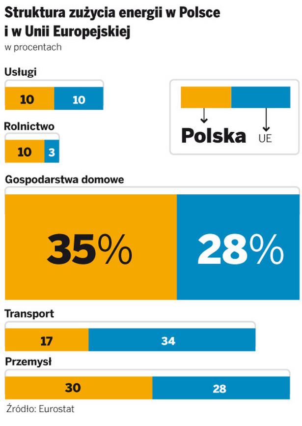 Struktura zużycia energii w Polsce i w Unii Europejskiej