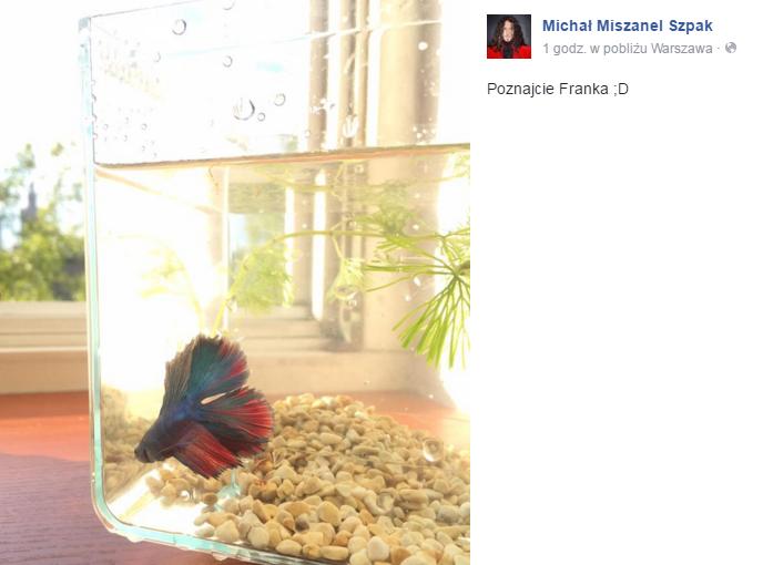 Michał Szpak na Facebooku
