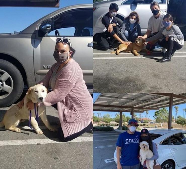 Kalifornija, prihvalitilište za životinje