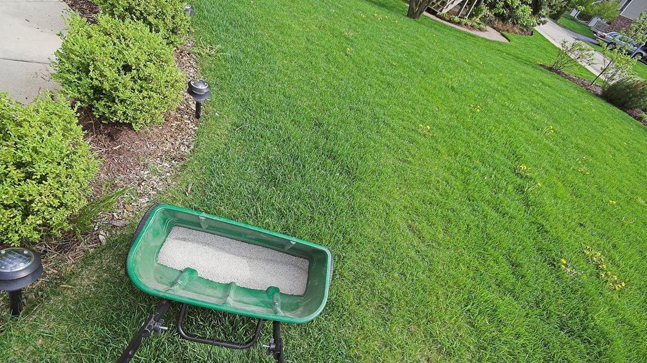 Jesienne nawożenie trawnika -  Jay Crihfield/stock.adobe.com