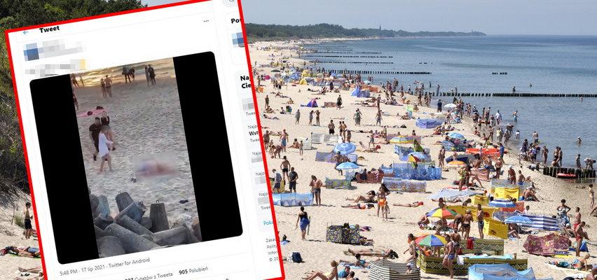 Zgorszenie na plaży w Mielnie. Nie mogli opanować żądzy, półnago wili się na piasku. Plażowicze nie wytrzymali!