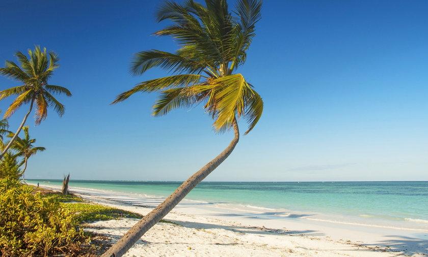 Piaszczyste plaże, widok na bezkres oceanu i zero obostrzeń! Polacy uciekają od pandemii między innmyi na Zanzibar.