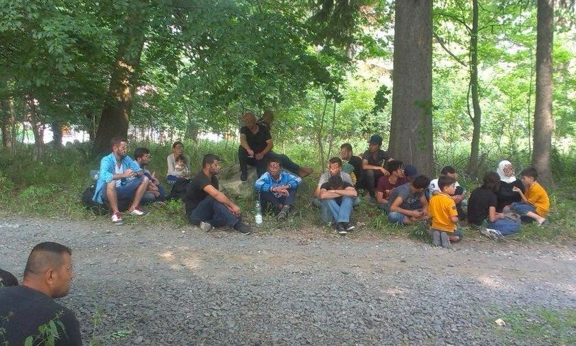 Zatrzymano 31 nielegalnych migrantów