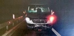 Kierowca nie spodziewał się tego na swojej drodze. Nietypowy wypadek w Łańcucie